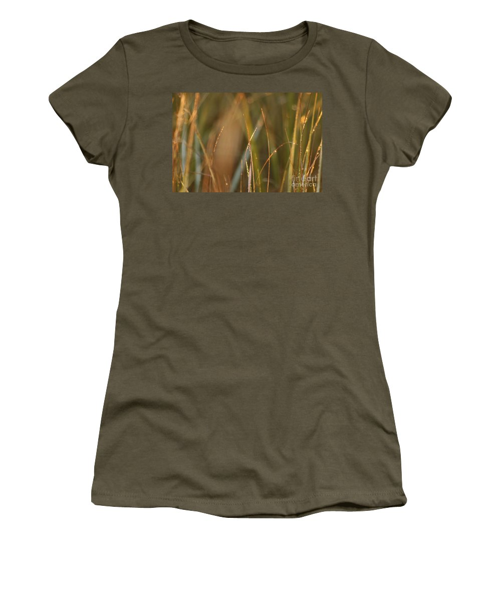 Dew Women's T-Shirt (Athletic Fit) featuring the photograph Dewy Grasses by Nadine Rippelmeyer