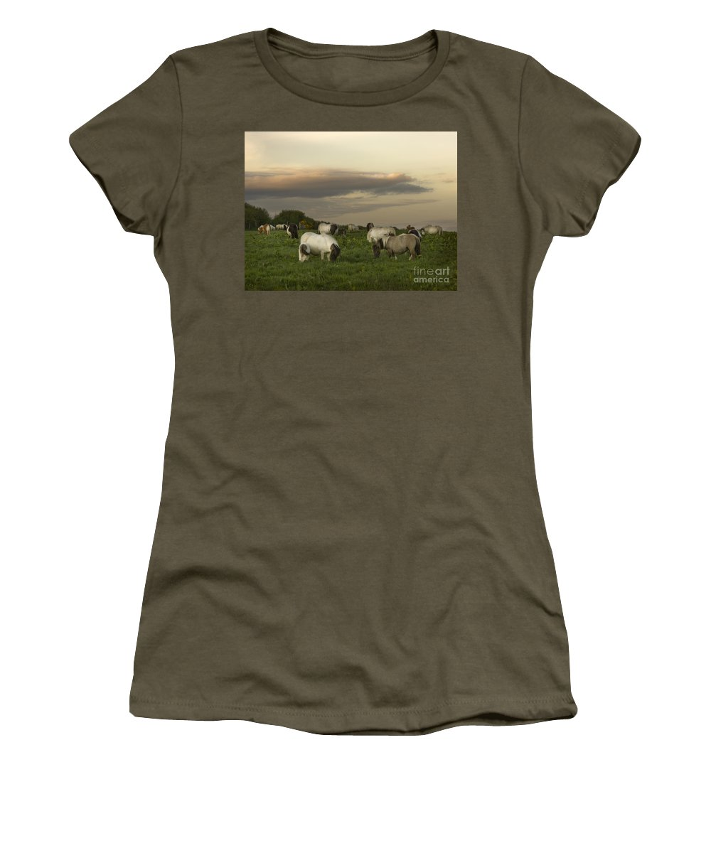 Ponies Women's T-Shirt (Athletic Fit) featuring the photograph Dining Ponies by Angel Ciesniarska