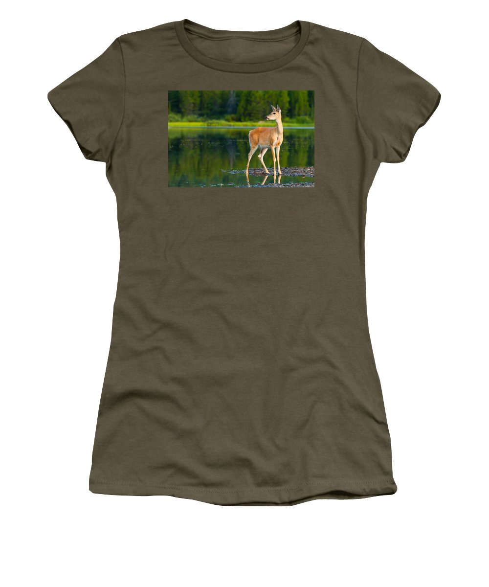Animal Women's T-Shirt featuring the photograph Doe by Sebastian Musial