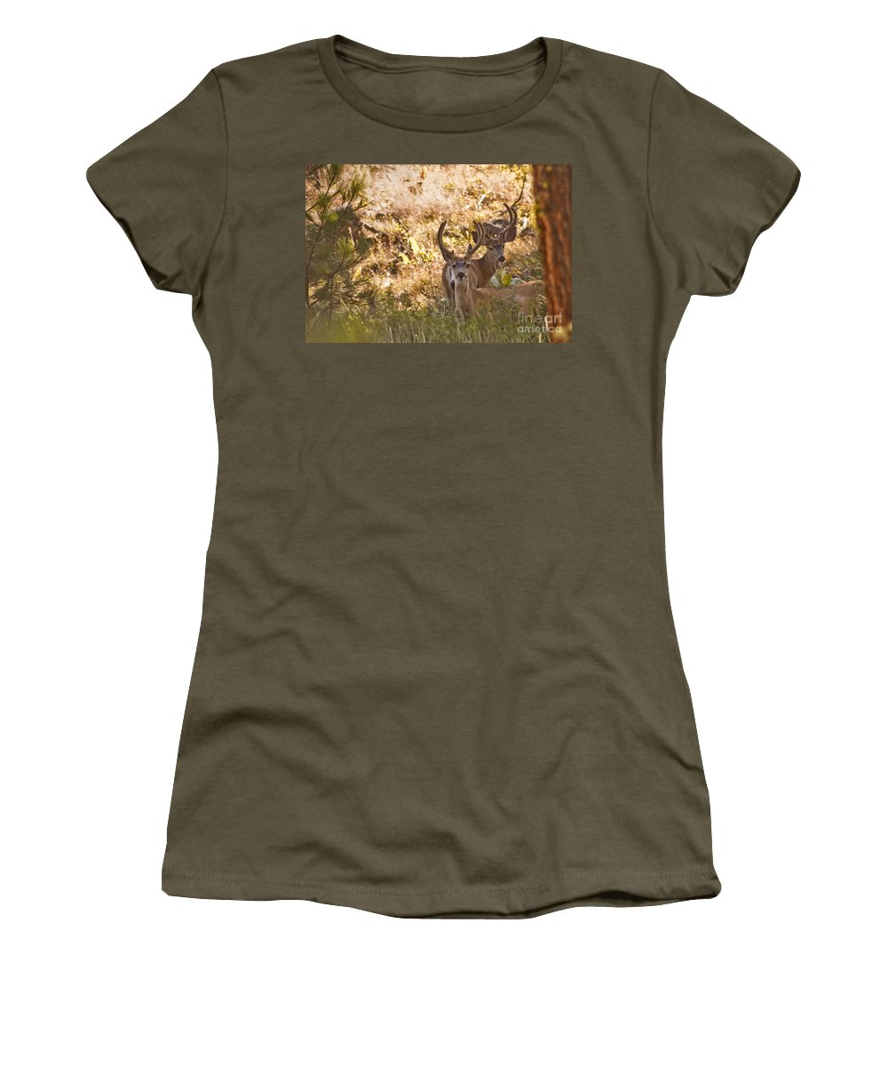 Buck Women's T-Shirt (Athletic Fit) featuring the photograph Double by Andrea Goodrich