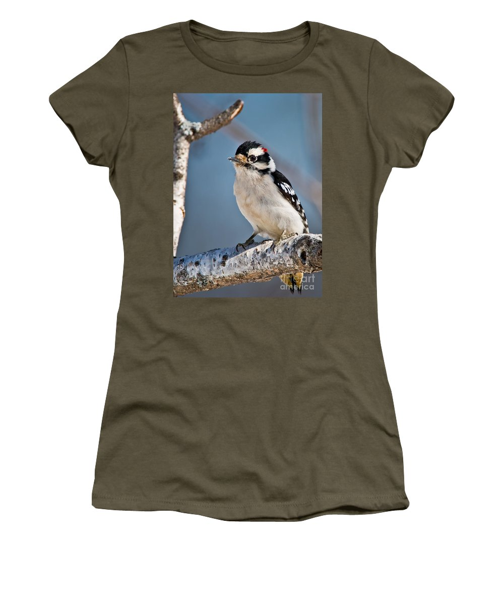 Downy Woodpecker Women's T-Shirt featuring the photograph Downy Woodpecker Pictures 39 by World Wildlife Photography