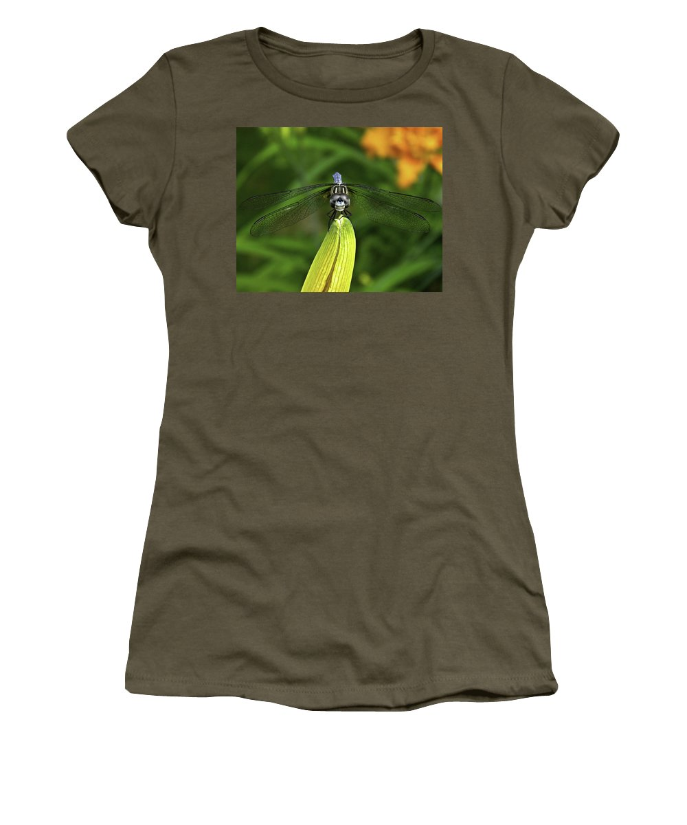 Dragonfly. Insect Women's T-Shirt featuring the photograph Dragon by James Ekstrom