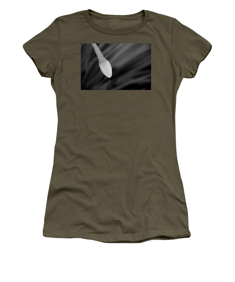 Flower Women's T-Shirt featuring the photograph Dropping In by Ron White