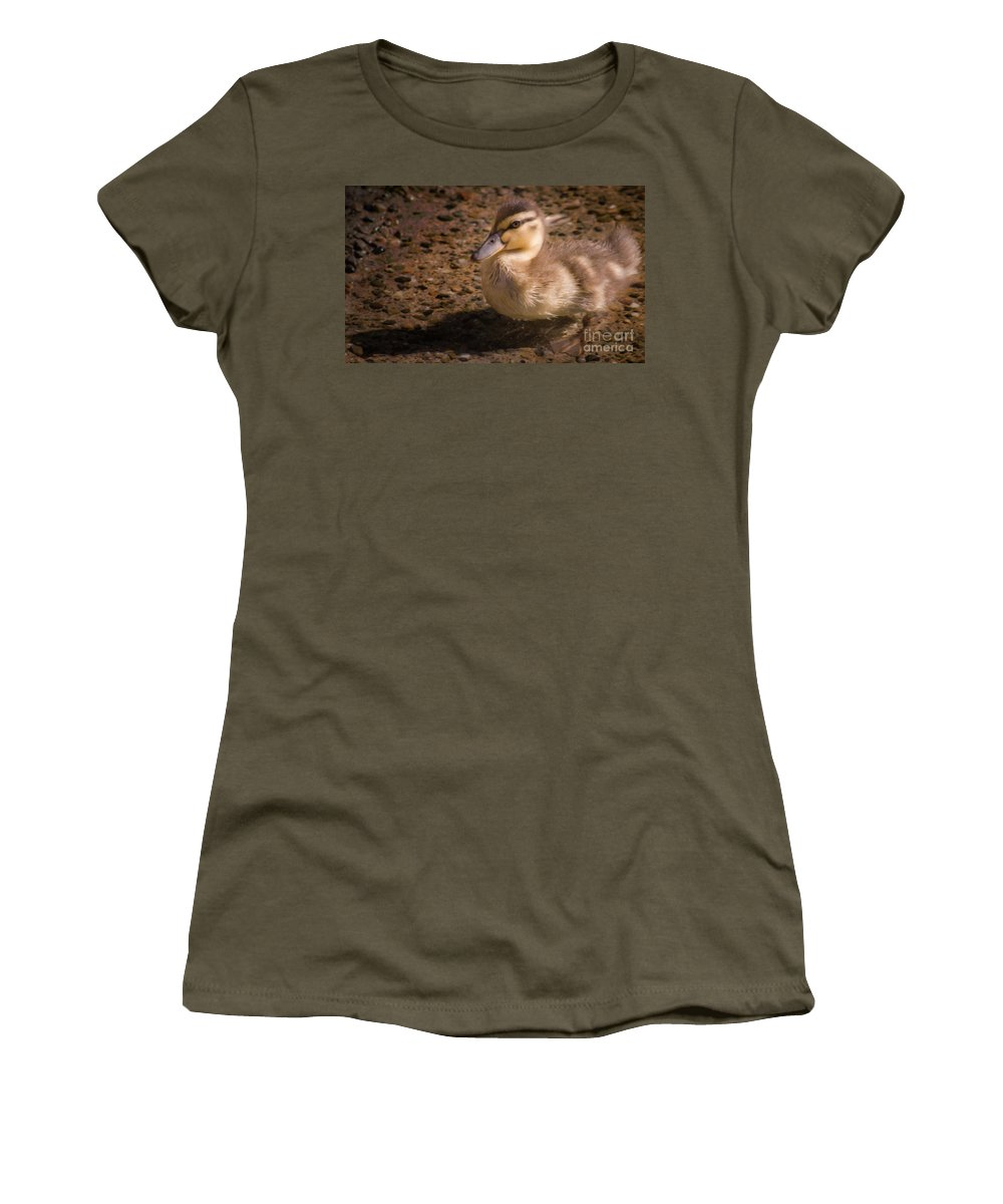 Duck Women's T-Shirt (Athletic Fit) featuring the photograph Duckling by Andrea Goodrich