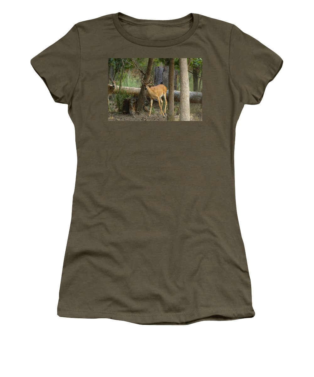 Buck Women's T-Shirt (Athletic Fit) featuring the photograph East Texas Whitetail by Kim Henderson
