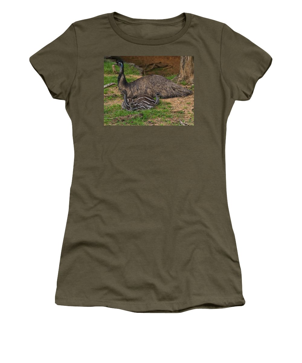 Bird Women's T-Shirt featuring the photograph Emu And Chicks by Chris Flees
