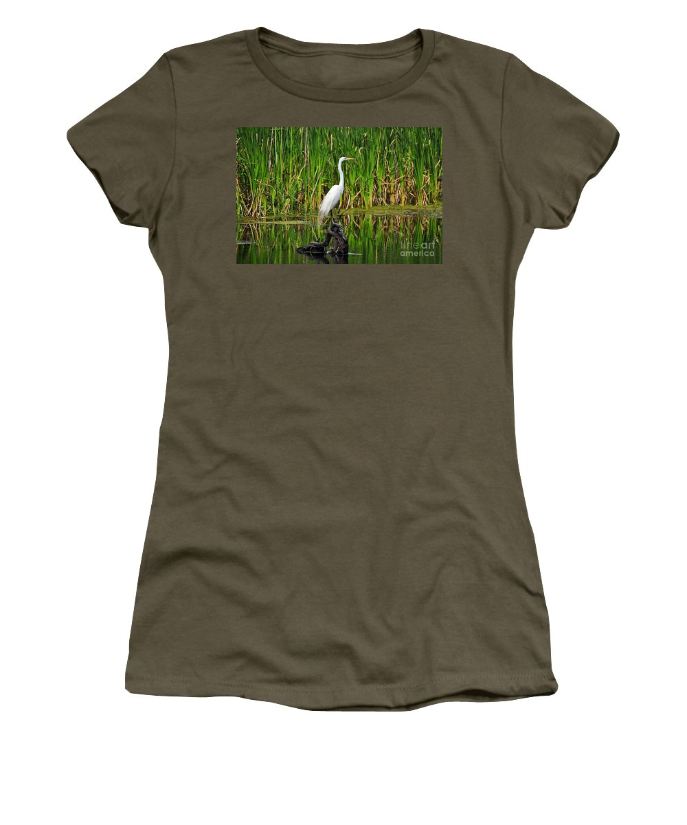 Egret Women's T-Shirt featuring the photograph Exquisite Egret by Al Powell Photography USA