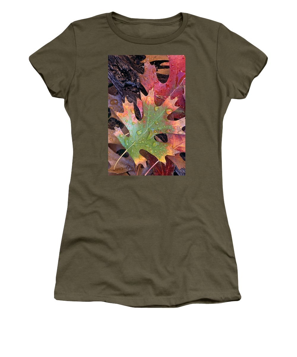 Leaves Women's T-Shirt featuring the photograph Fall Leaves I V by Jim Smith
