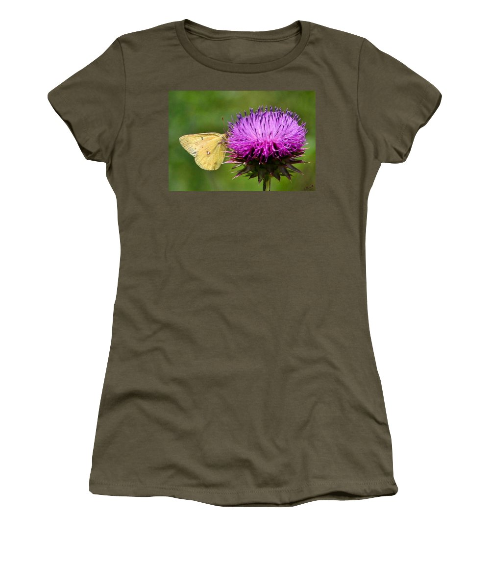 Sulfur Butterfly Women's T-Shirt featuring the photograph Feeding On Thistle by Kristin Elmquist