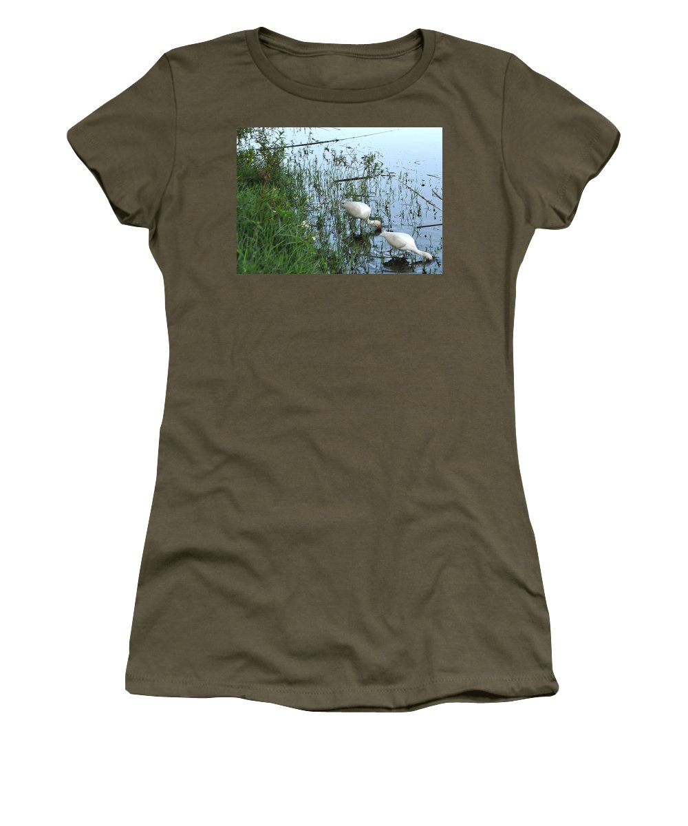 Ibis Women's T-Shirt (Athletic Fit) featuring the photograph Feeding Time by Mickey Krause