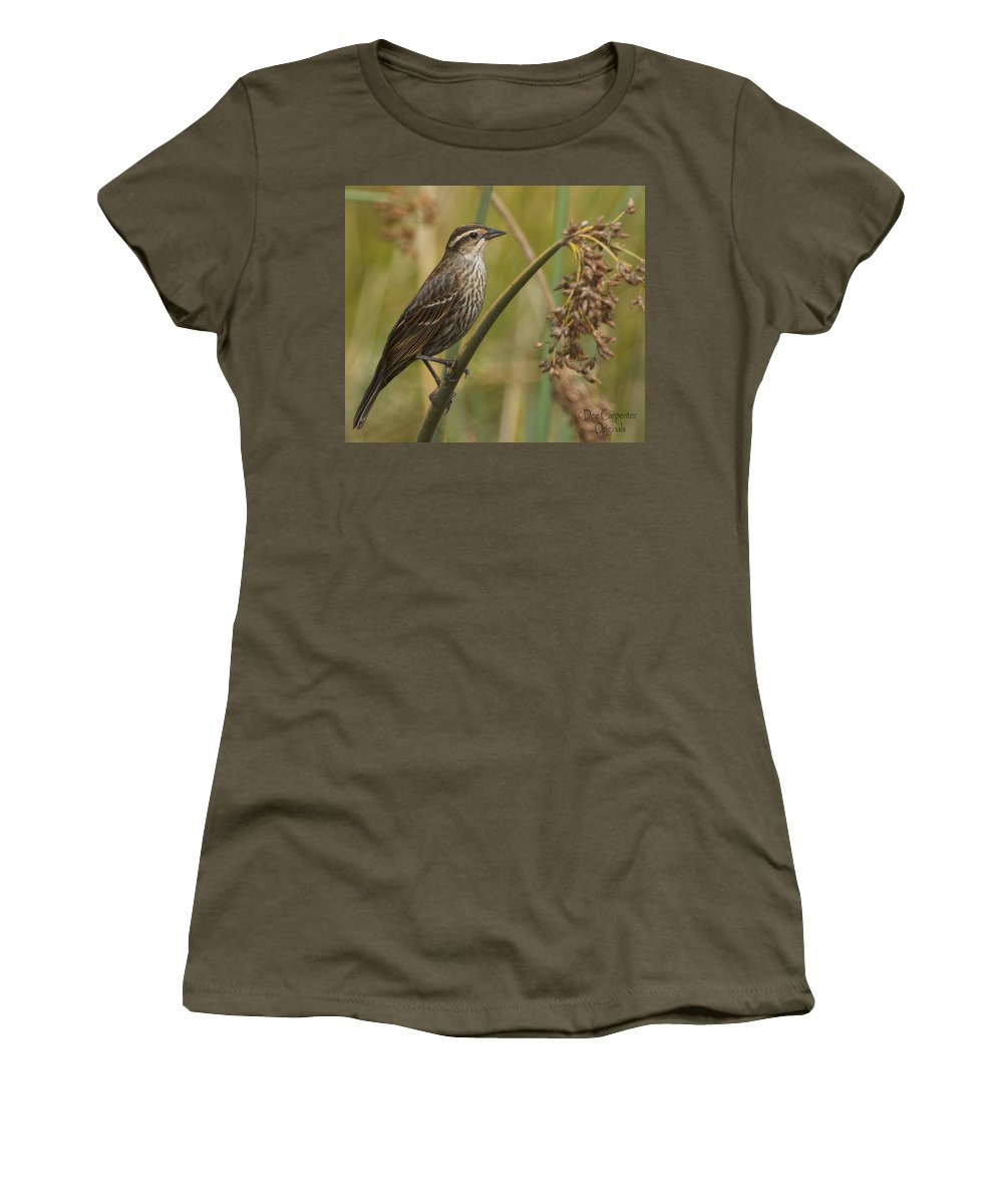 Red-winged Women's T-Shirt (Athletic Fit) featuring the photograph Female Redwing Blackbird by Dee Carpenter