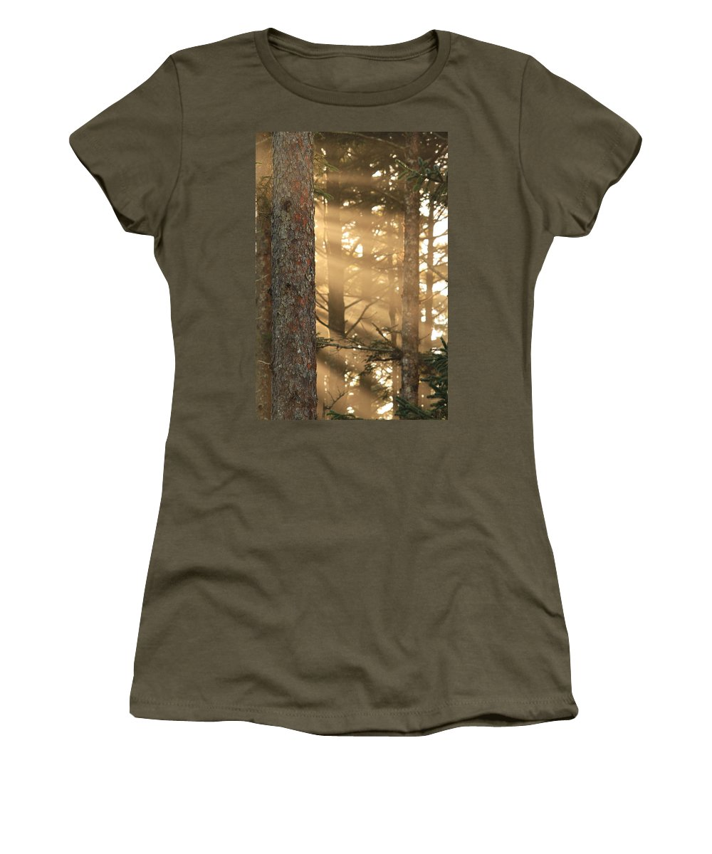 Bark Women's T-Shirt featuring the photograph Firs On Fire by Laddie Halupa