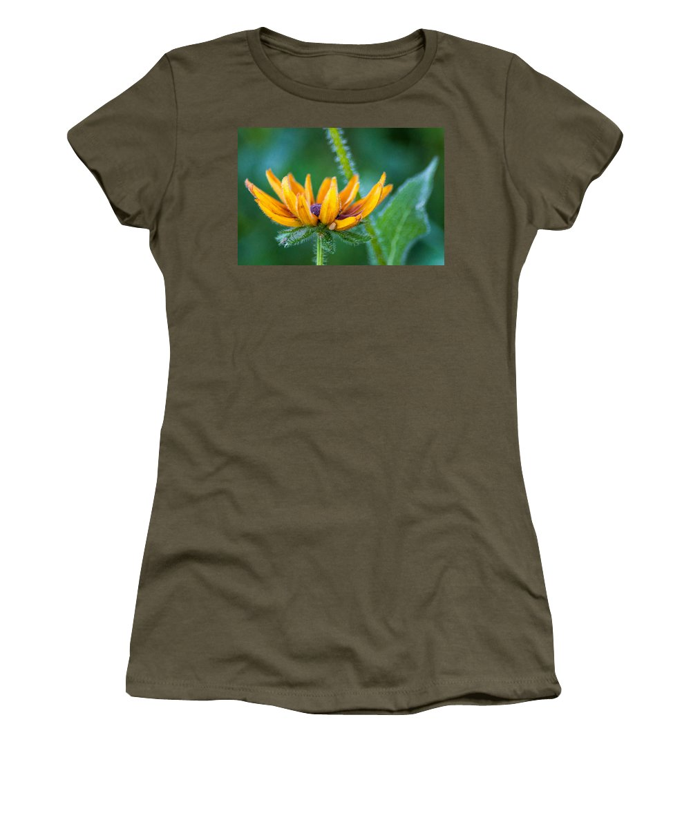 Wildflower Women's T-Shirt featuring the photograph Floral Fuzz by Bill Pevlor
