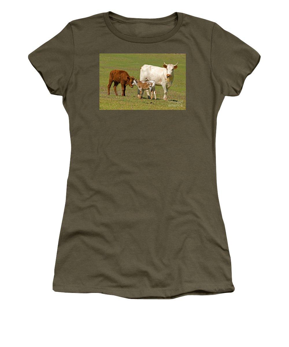 Animal Women's T-Shirt featuring the photograph Florida Spanish Cattle by Millard H. Sharp