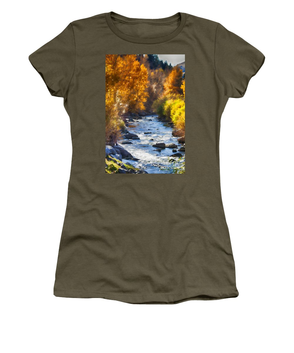 Ice Women's T-Shirt featuring the photograph Flow V16 by Douglas Barnard