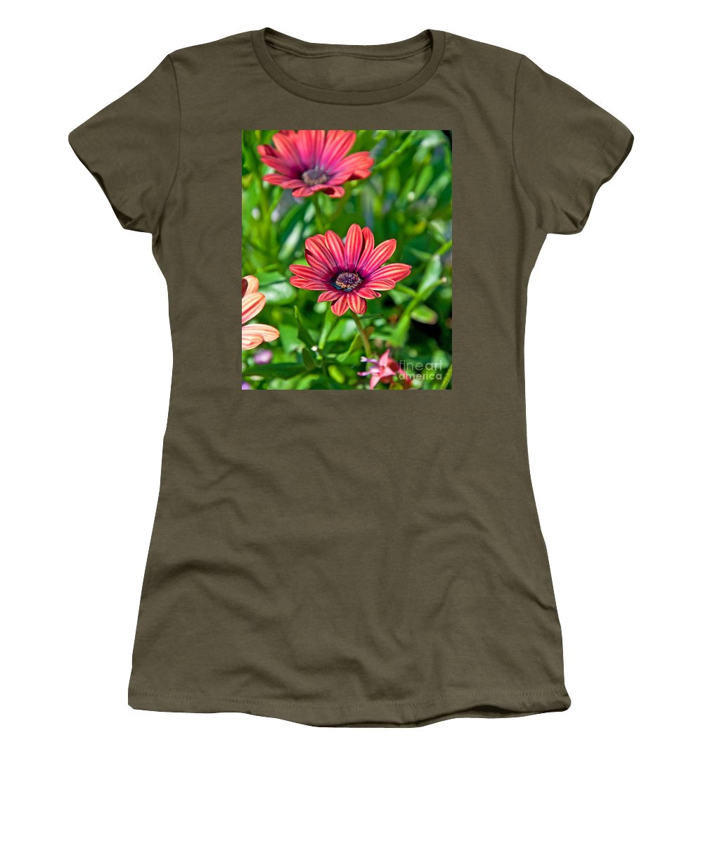 Flower Women's T-Shirt featuring the photograph Flower Astra Outback Purple Art Prints by Valerie Garner