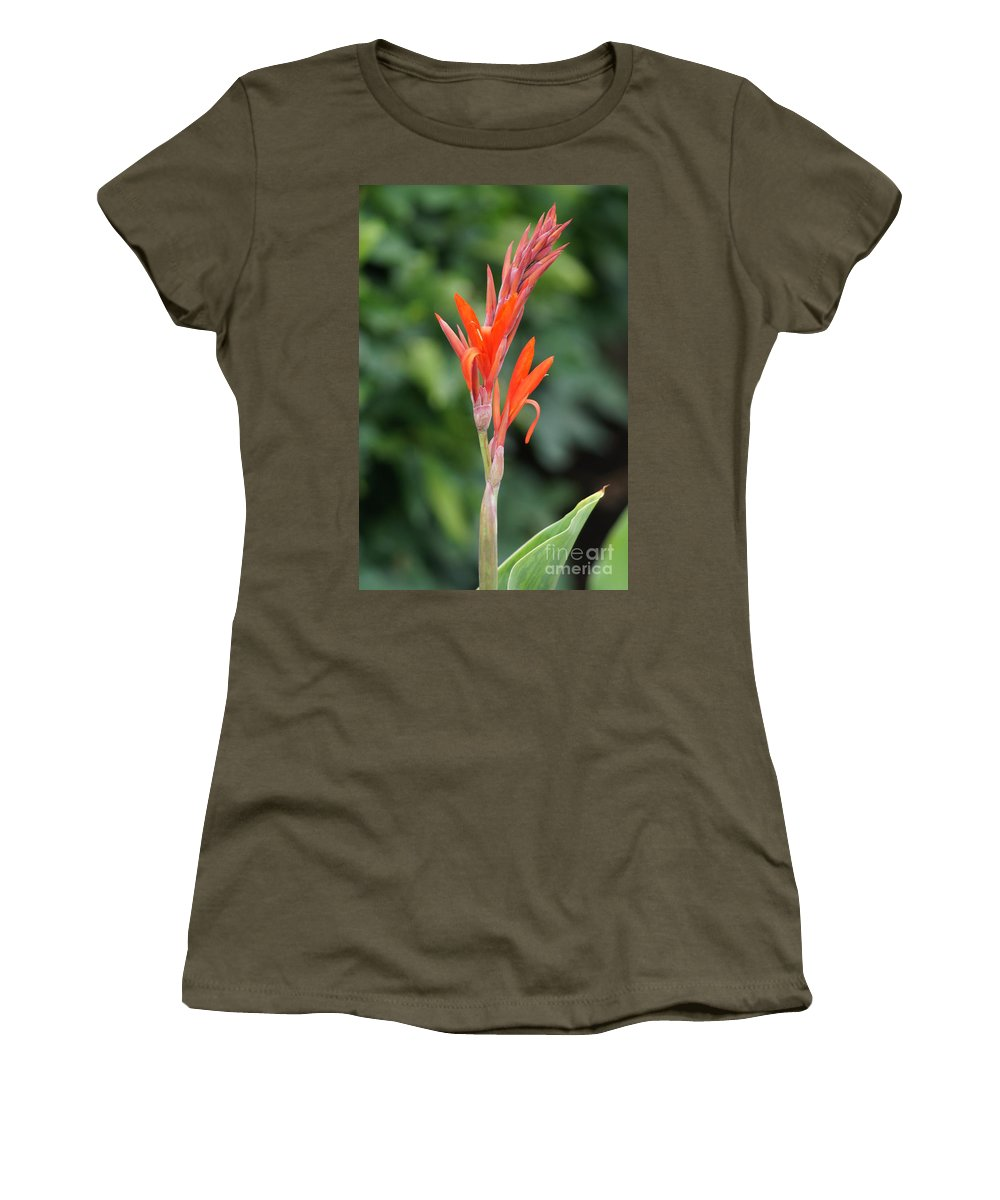 Beautiful Flower Women's T-Shirt featuring the photograph Flower by Jeffery L Bowers