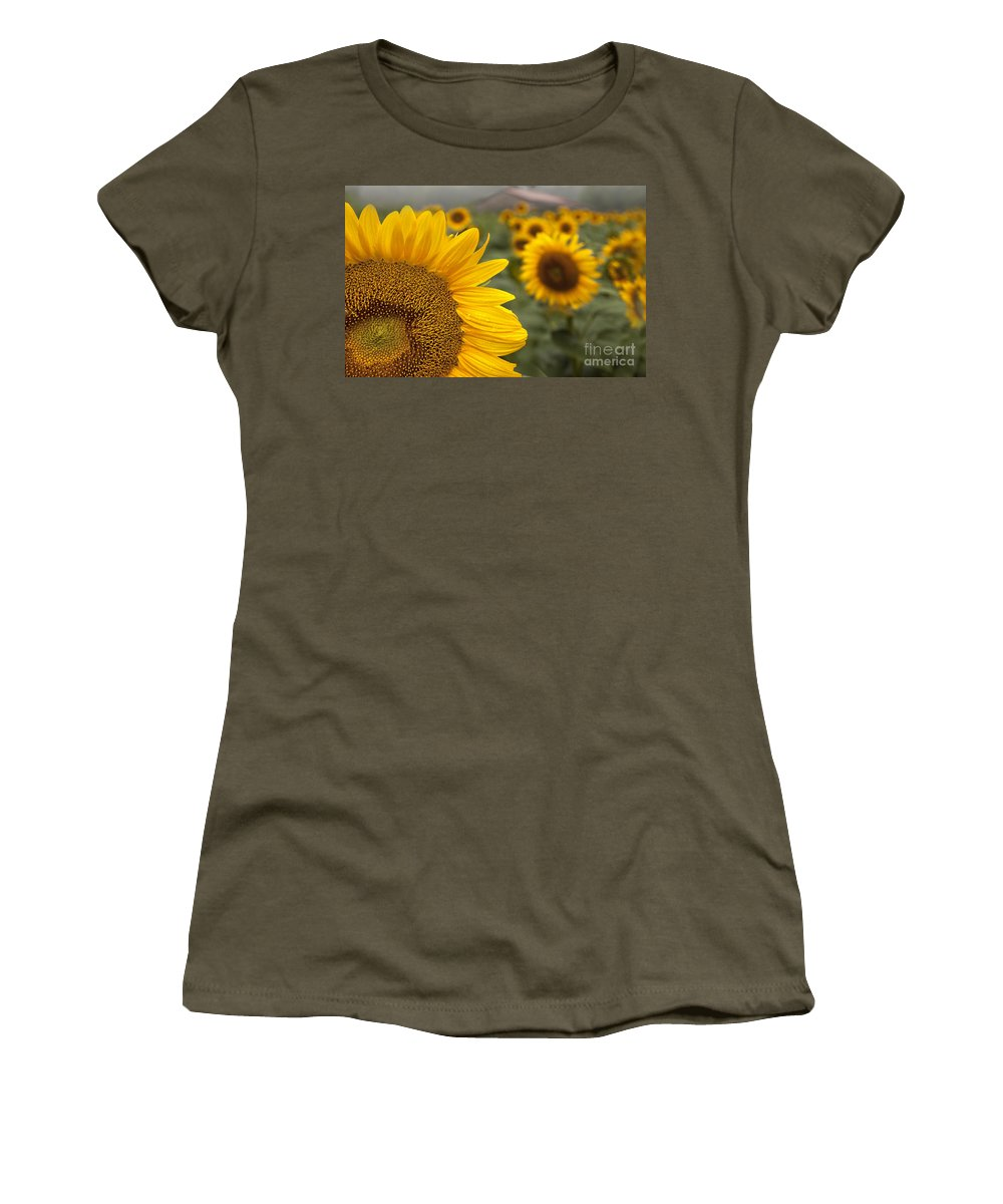 Sunflower Women's T-Shirt featuring the photograph Foggy Morning At The Sunshine Farm by Linda D Lester
