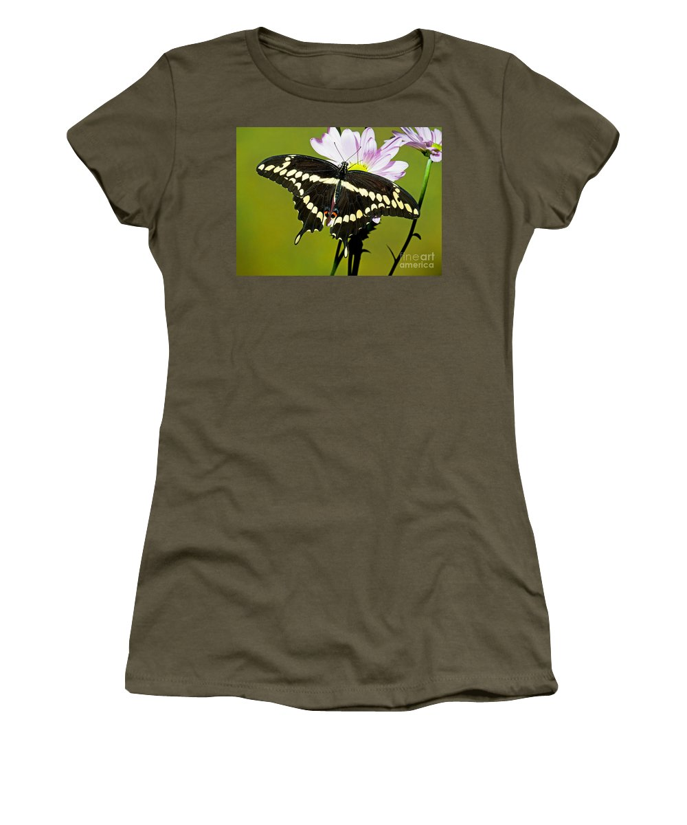 Nature Women's T-Shirt featuring the photograph Giant Swallowtail Butterfly by Millard H. Sharp
