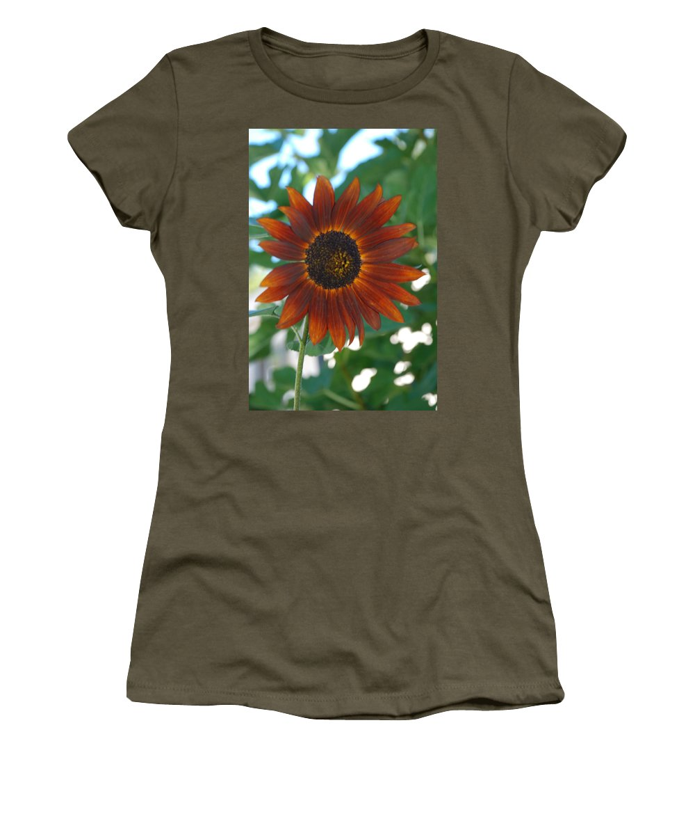 Sunflower Women's T-Shirt featuring the photograph Glowing Red Sunflower by Carol Eliassen