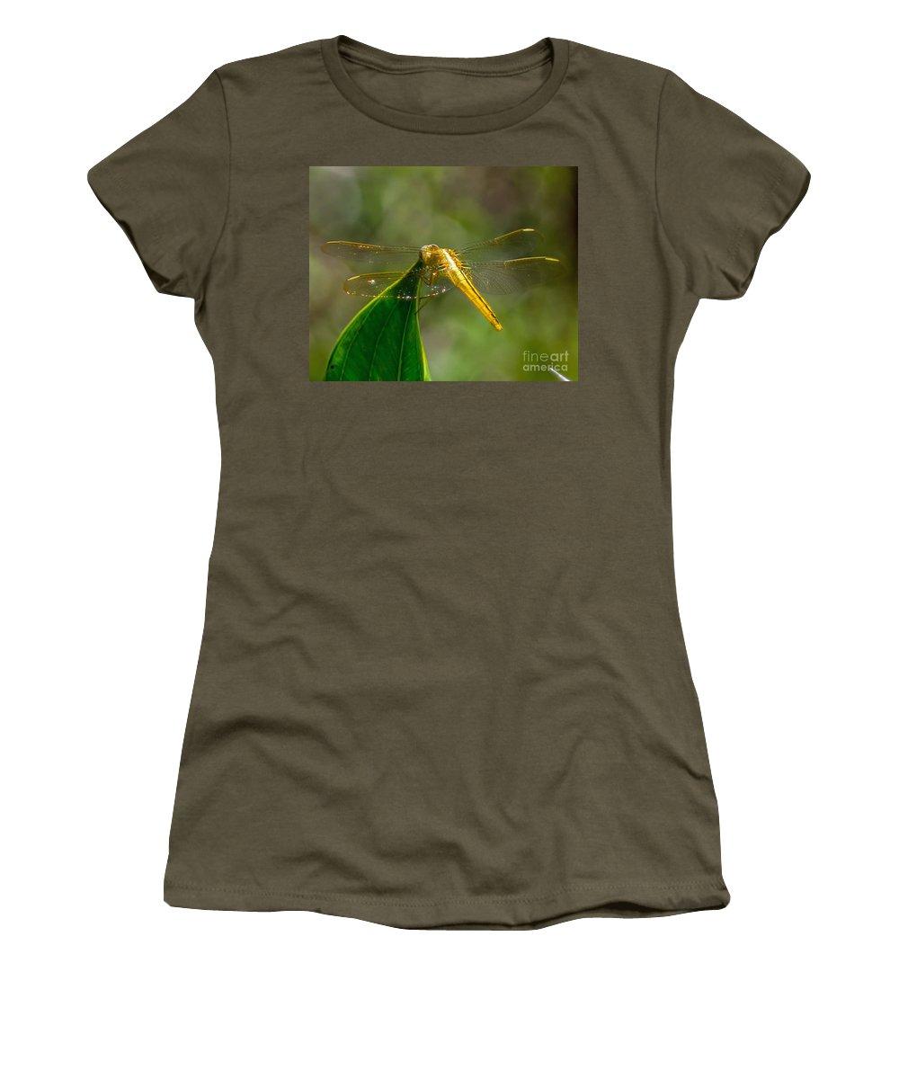 Golden Women's T-Shirt featuring the photograph Golden Dragonfly by Stephen Whalen