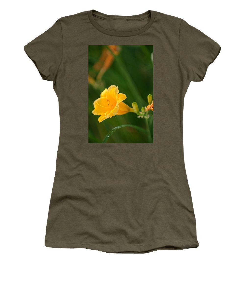 Golden Lilly Women's T-Shirt featuring the photograph Golden Lilly by Paul Mangold