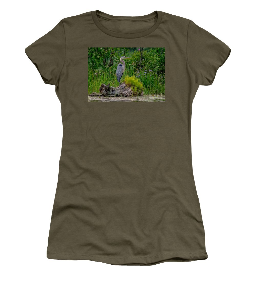 Ontario Women's T-Shirt featuring the photograph Gorgeous Heron by Cheryl Baxter
