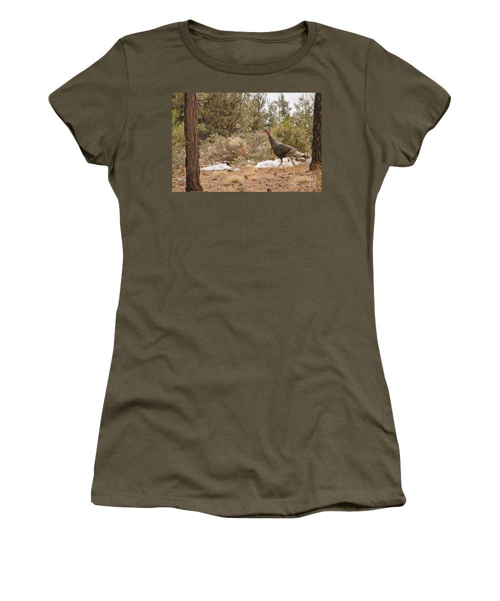 Wild Turkey Women's T-Shirt featuring the photograph Gould's Wild Turkey Vii by Donna Greene