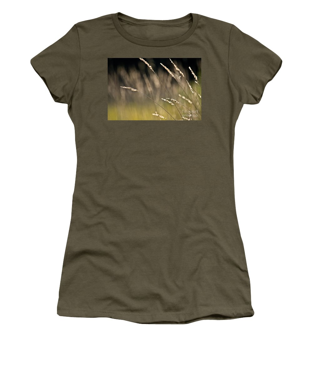 Women's T-Shirt featuring the photograph Grasses Blowing by Cheryl Baxter