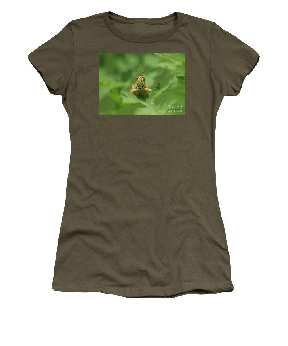 Grasshopper Women's T-Shirt featuring the photograph Grasshopper Portrait by Olga Hamilton