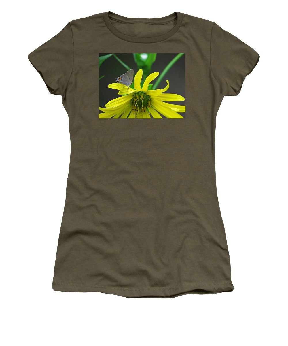 Gray Hairstreak Butterfly Women's T-Shirt featuring the photograph Gray Hairstreak Butterfly by MTBobbins Photography