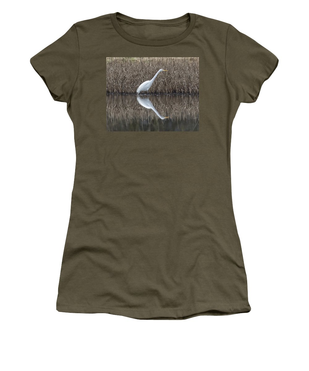 Great Egret Women's T-Shirt featuring the photograph Great Egret by Bob Stevens