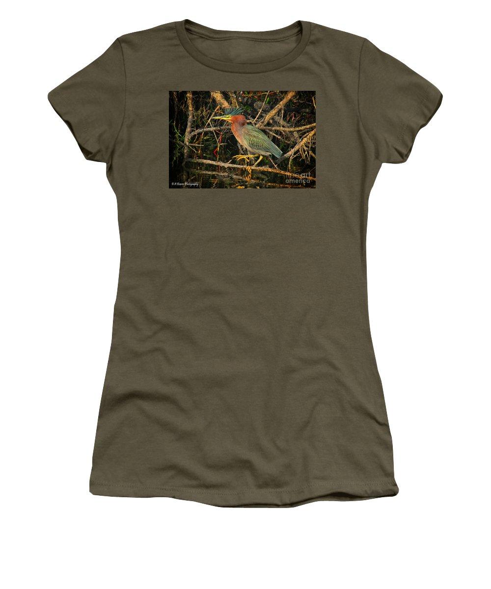 Green Heron Women's T-Shirt featuring the photograph Green Heron Basking In Sunlight by Barbara Bowen