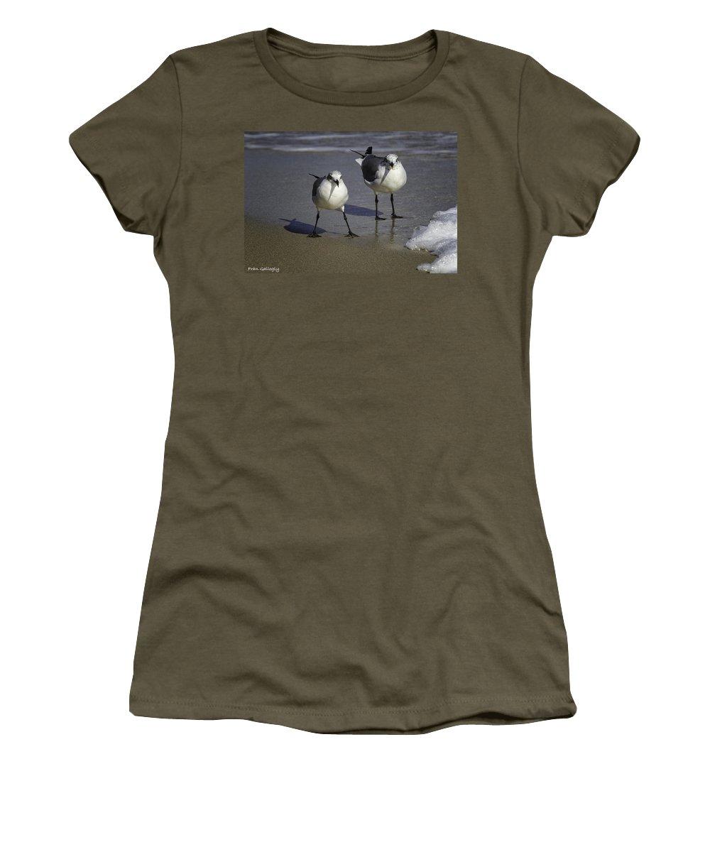 Florida Women's T-Shirt featuring the photograph Gulls On The Beach by Fran Gallogly