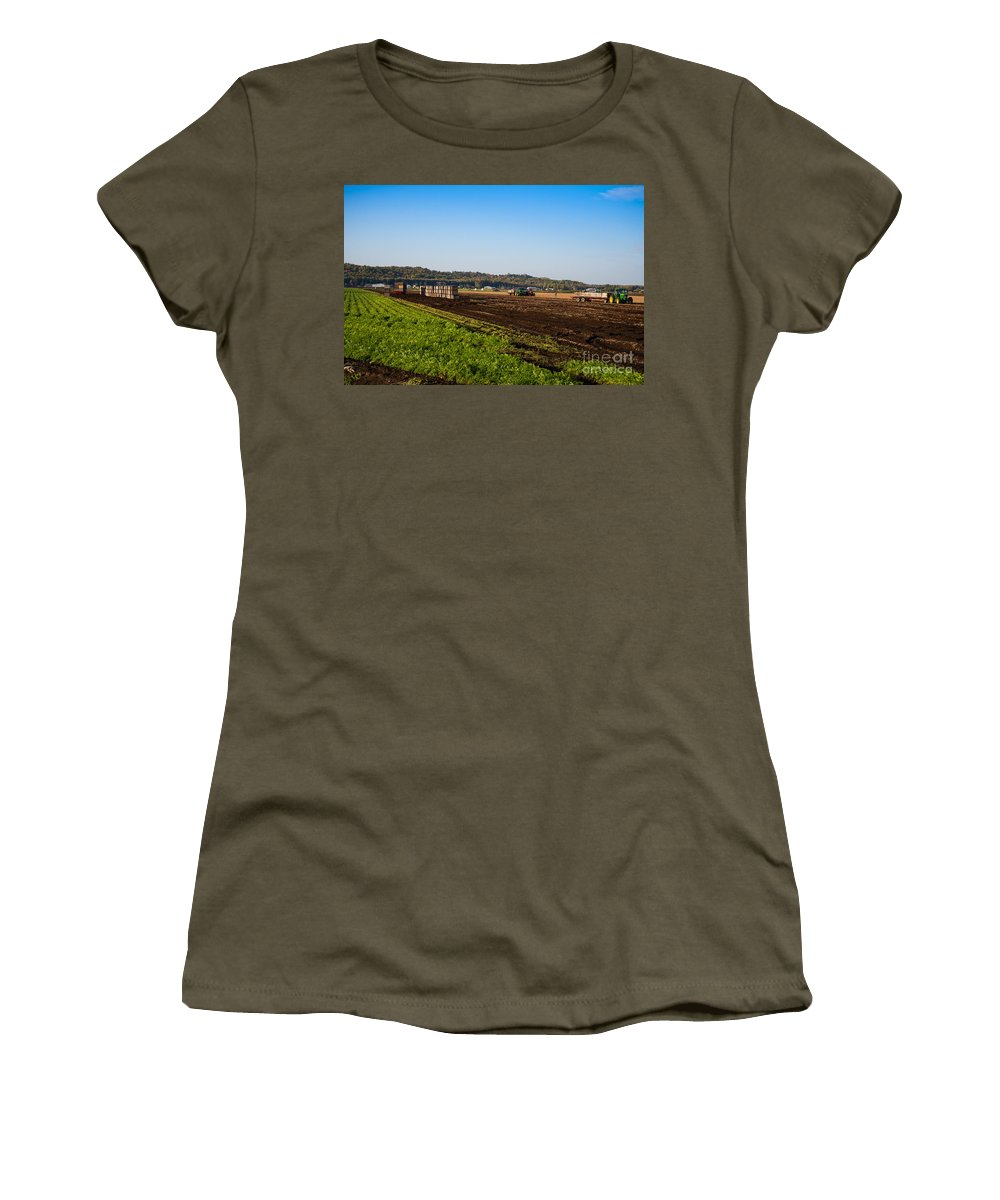 Farm Women's T-Shirt featuring the photograph Harvest Time In Holland Marsh Ontario by Les Palenik