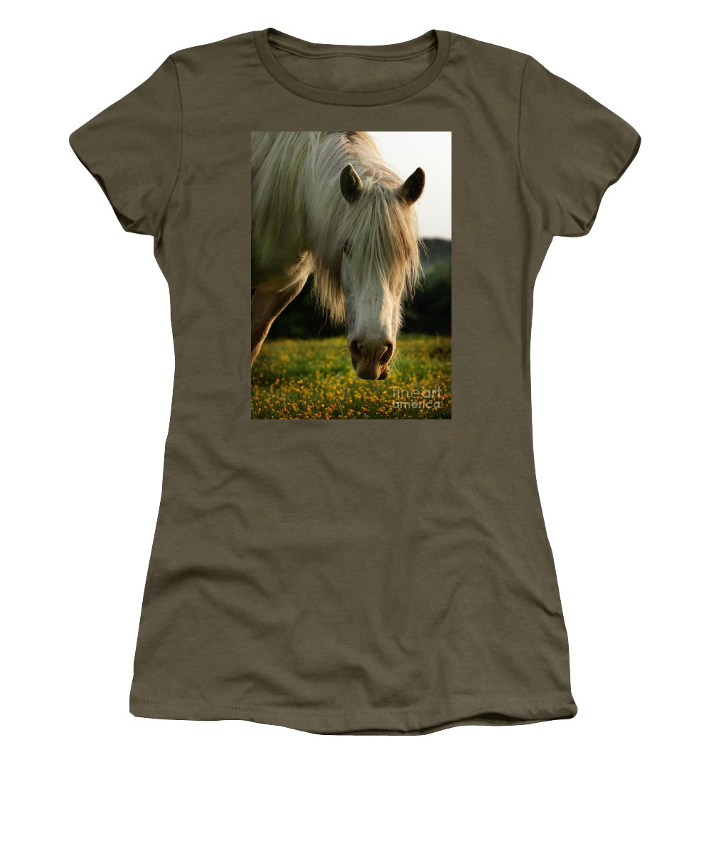 Grey Horse Women's T-Shirt (Athletic Fit) featuring the photograph Hello Mate by Angel Tarantella