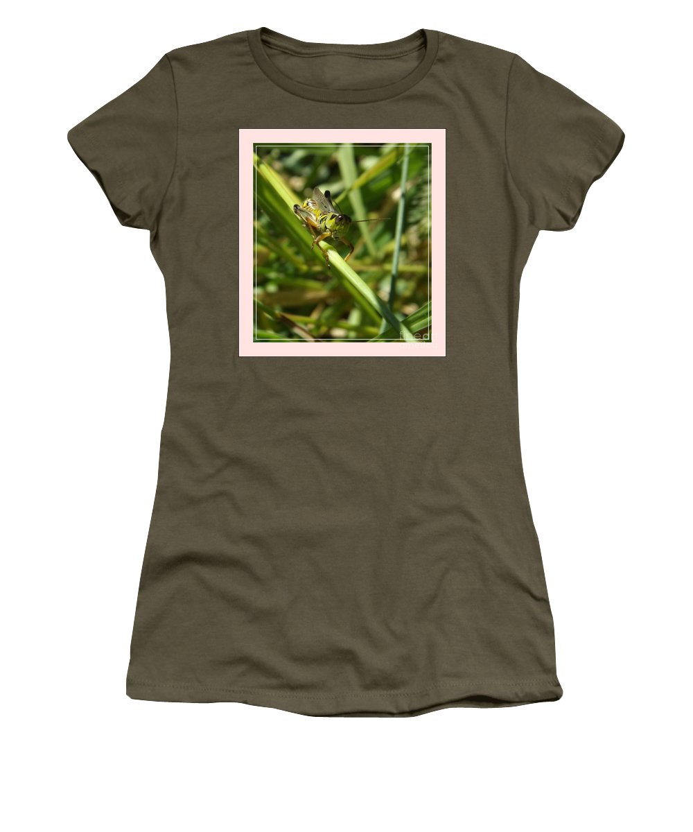 Grasshopper Women's T-Shirt featuring the photograph Holding On by Sara Raber