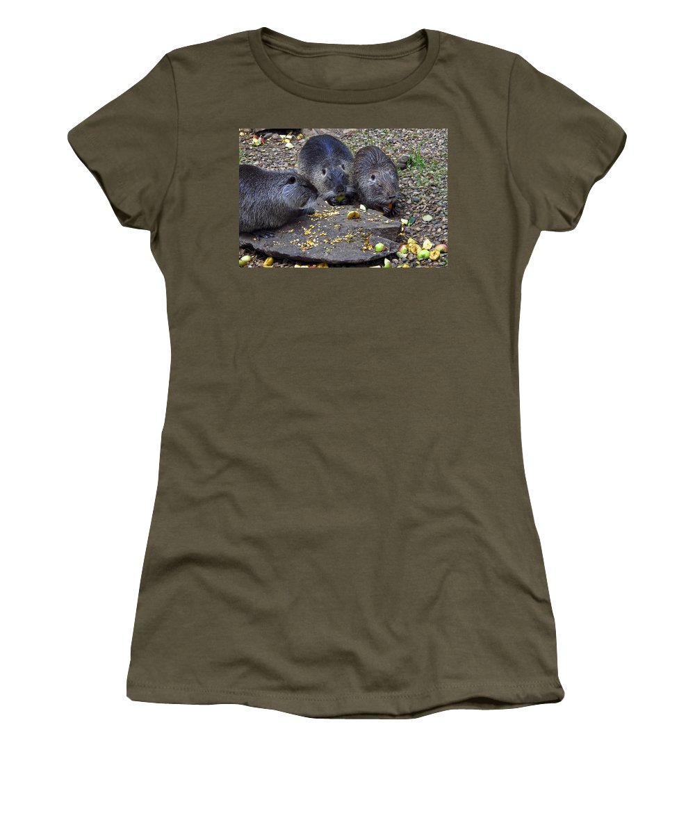 3 Small Animals Eating Women's T-Shirt featuring the photograph Hungry Critters by Sally Weigand