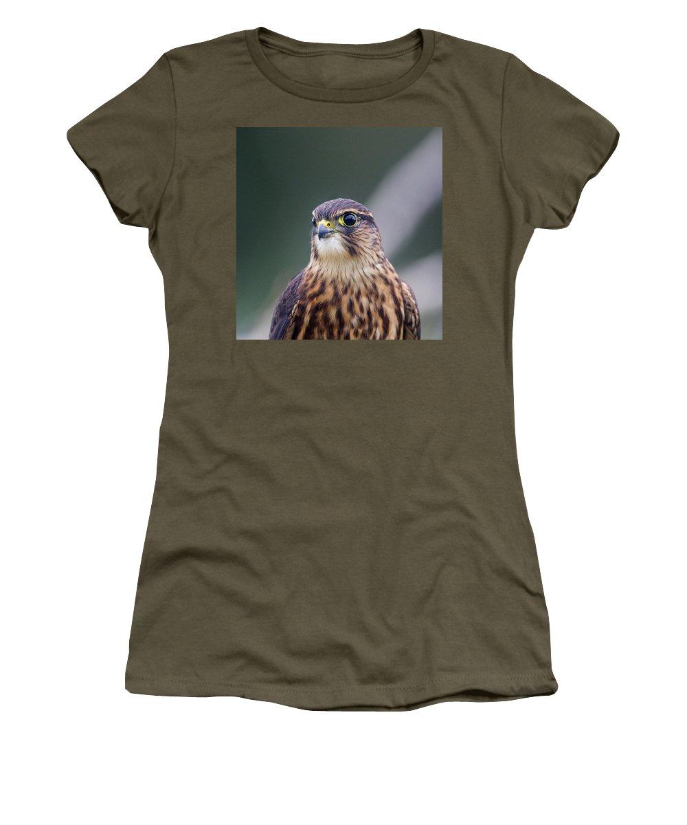 Doug Lloyd Women's T-Shirt featuring the photograph Hunters Eye by Doug Lloyd
