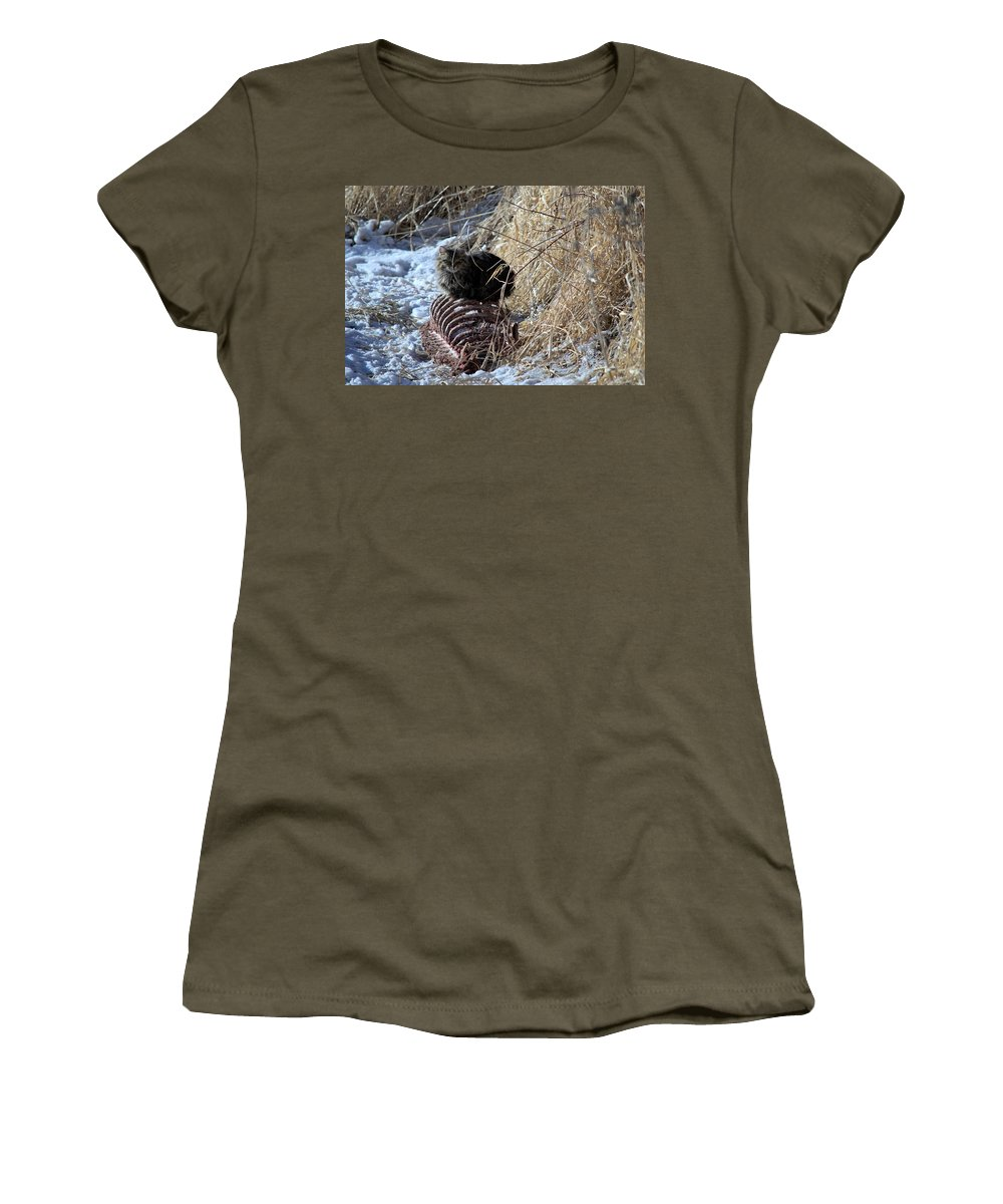 Cat Women's T-Shirt (Athletic Fit) featuring the photograph I Ate The Whole Thing by Bonfire Photography