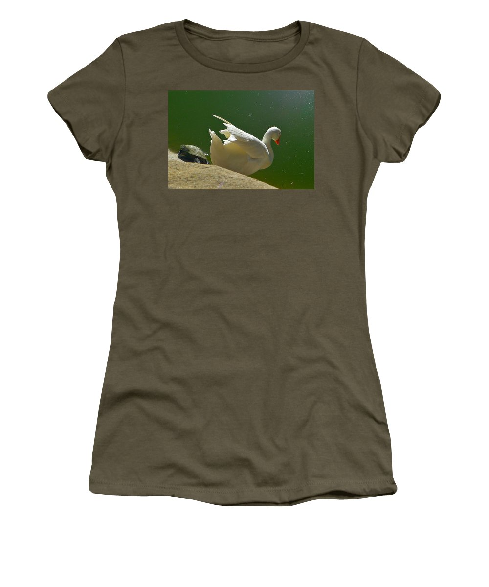 Snow Goose Women's T-Shirt featuring the photograph I Think I'll Take A Dip by Denise Mazzocco