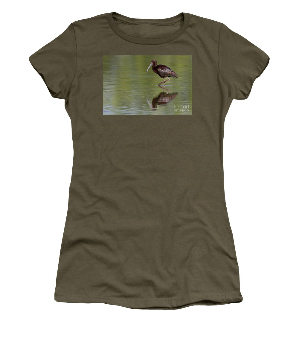 White Face Ibis Women's T-Shirt featuring the photograph Ibis Reflection by Bryan Keil
