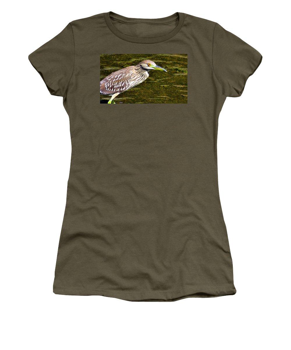 Heron Women's T-Shirt featuring the photograph Juvie by Art Dingo