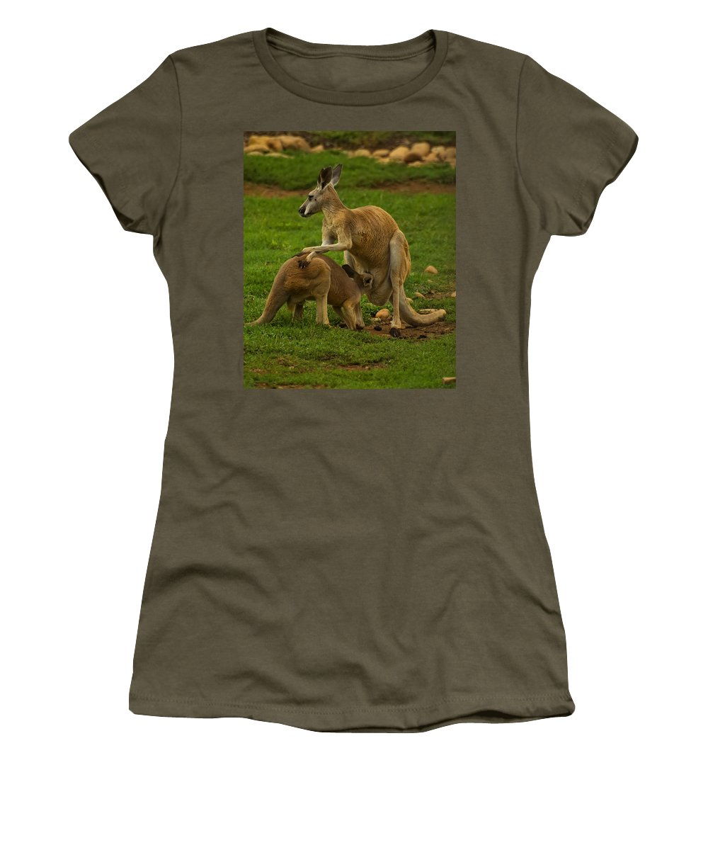 Kangaroo Women's T-Shirt featuring the digital art Kangaroo Nursing Its Joey by Chris Flees