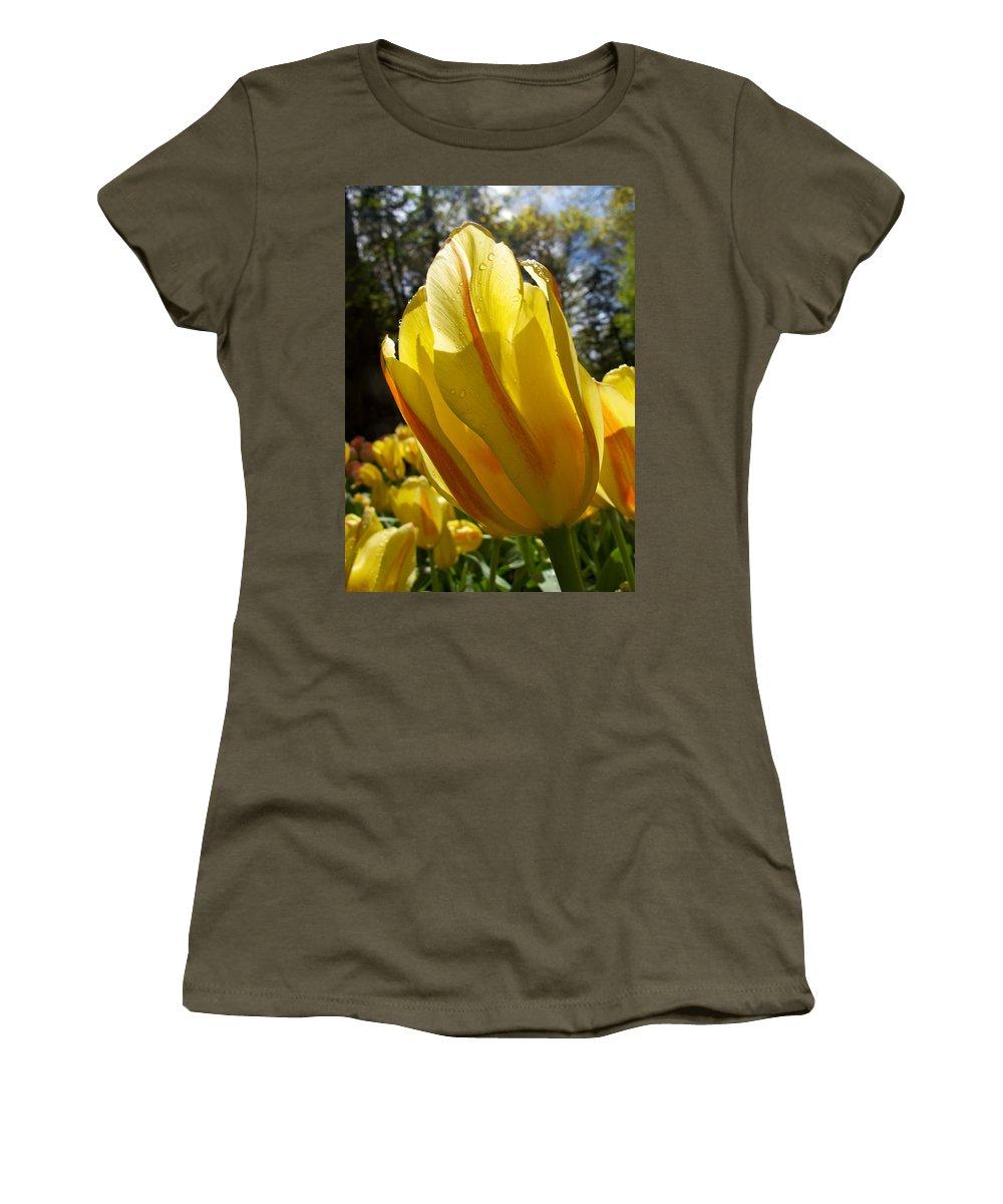 Holland Women's T-Shirt featuring the photograph Keukenhof Yellow Tulips by David Beebe