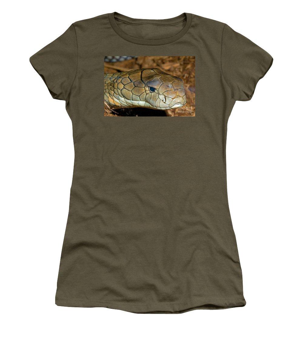 Asia Women's T-Shirt featuring the photograph King Cobra by Millard Sharp