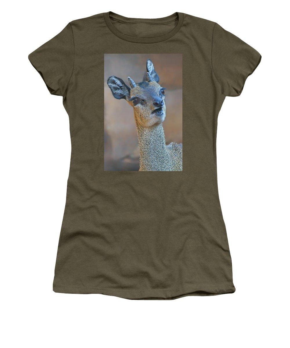 Klipspringer Women's T-Shirt featuring the photograph Klipspringer Portrait by Nikolyn McDonald