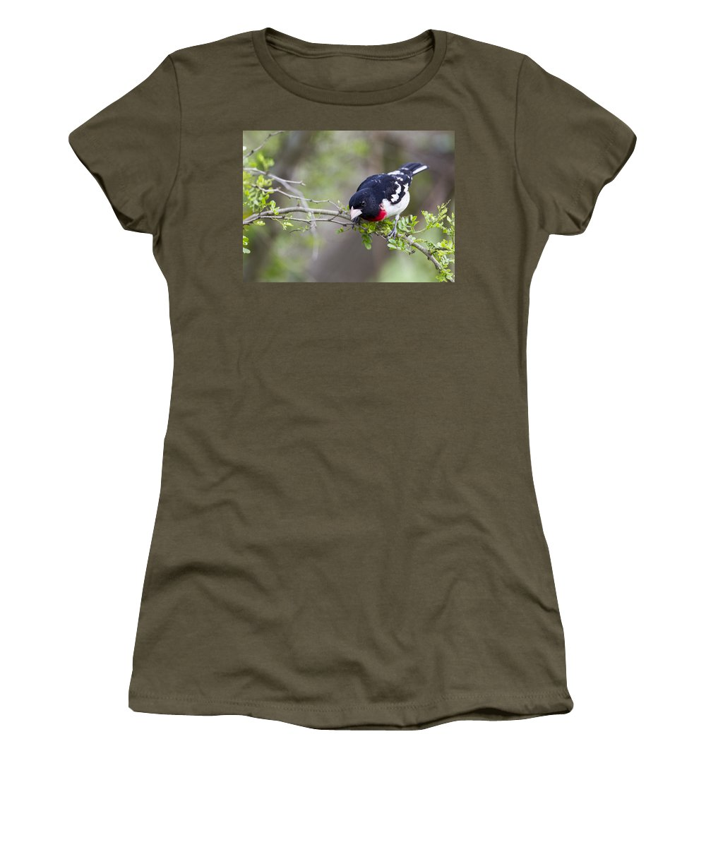 Doug Lloyd Women's T-Shirt featuring the photograph Launch Time by Doug Lloyd