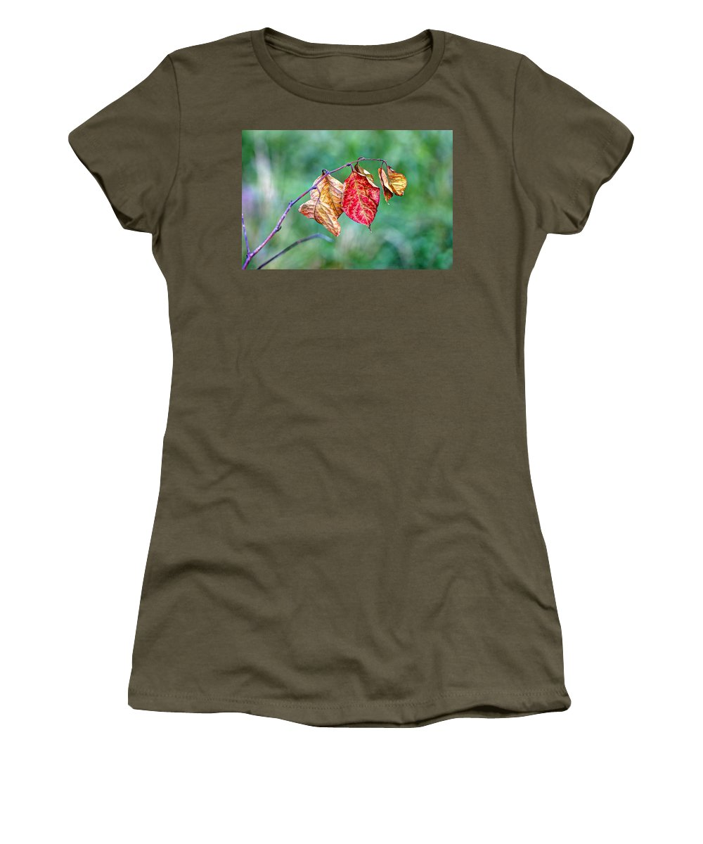 Leaf Women's T-Shirt featuring the photograph Leaving Summer Behind by Mother Nature