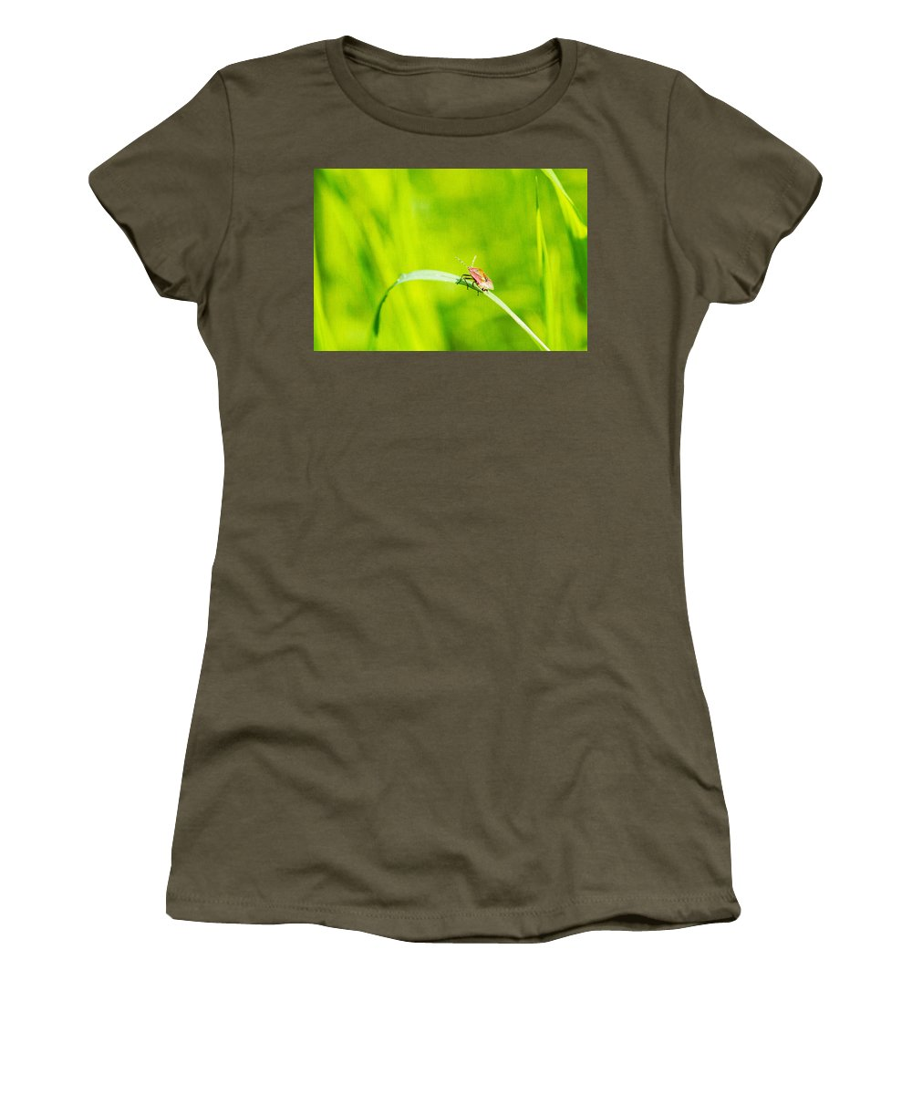Animal Women's T-Shirt featuring the photograph Let World Be Live by Alexander Senin